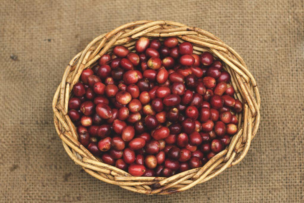 wheelys melbourne coffee blog